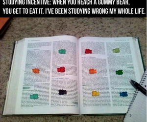 study, studying, and funny image