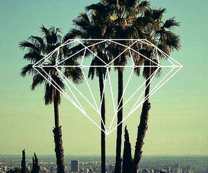 diamond, summer, and palms image