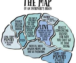 brain, introvert, and me image