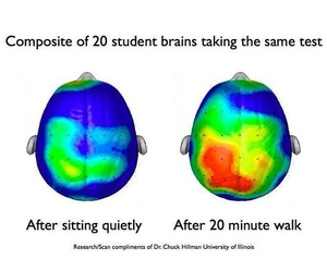 brain, student, and inspiration image
