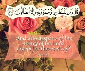 dutch, heart, and islam image