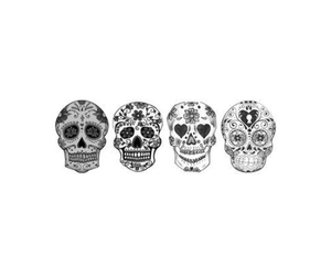 skull, art, and overlay image