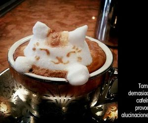 cafe, coffe, and quotes image