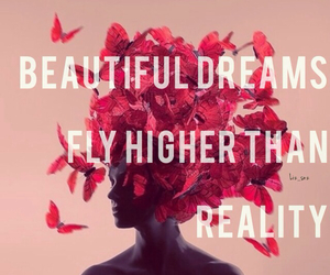 beautiful, butterfly, and Dream image