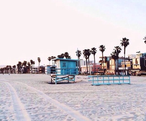 beach, california, and palms image