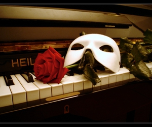 rose, mask, and Phantom of the Opera image