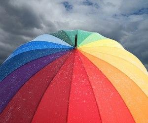 blue, purple, and rain image