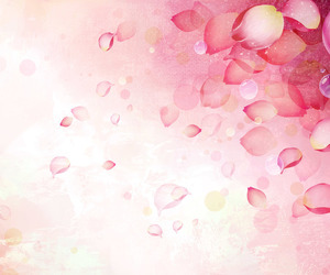 flowers, petals, and pink image