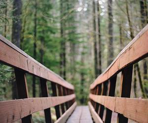 bridge, path, and road image
