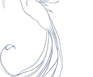 phoenix, tattoo, and fênix image