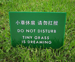 grass, green, and dreaming image