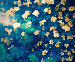 beautiful, flowers, and indie image