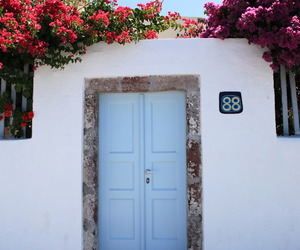 flowers, door, and travel image
