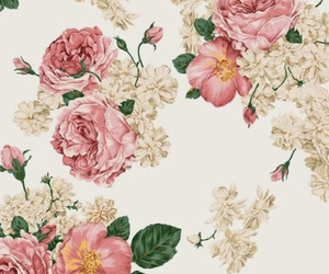 beautiful, flowers, and rosas image