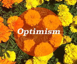 optimism and flowers image