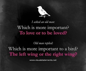 love, forever, and wings image