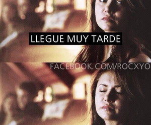 frases and the vampire diaries image