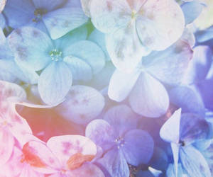 blue, pale, and grunge image