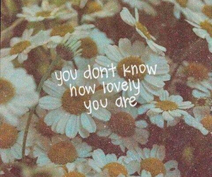 flowers, lovely, and quotes image