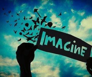 imagine, sky, and bird image
