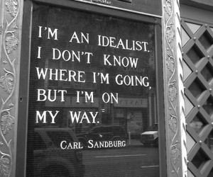 quotes, idealist, and life image