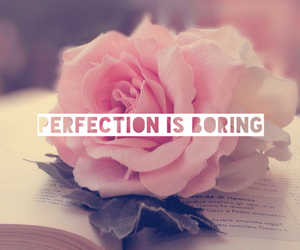 rose and perfection is boring image