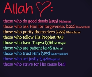heart, islam, and life image