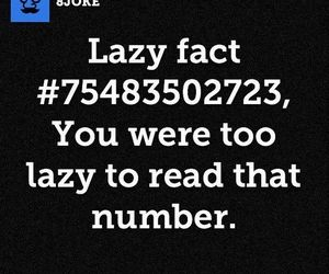 fact, funny, and Lazy image