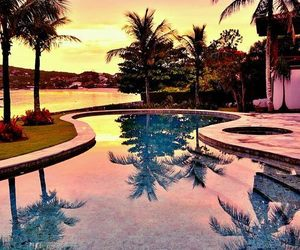 pool, summer, and palms image