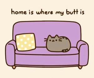 cat, home, and pusheen image