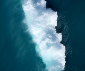 ocean, summer, and tropical image