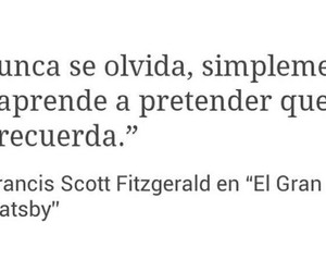 frases, never, and forget image