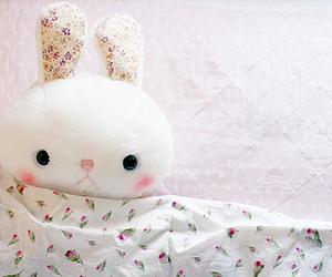 cute, bunny, and kawaii image