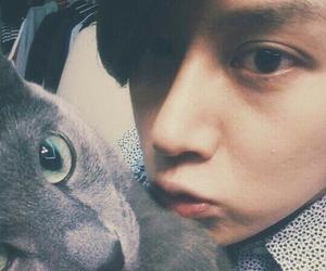 heechul, cat, and super junior image