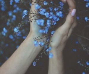 flower, grunge, and daisy image