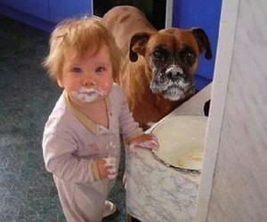 dog, baby, and funny image