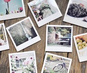 polaroid, photography, and photo image