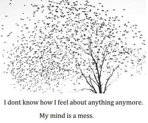 mess, quotes, and mind image