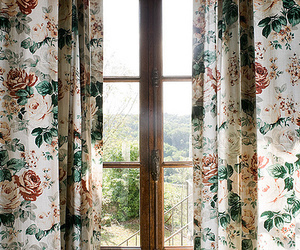 window, flowers, and vintage image