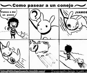 rabbit, espanol, and funny image
