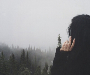 forest, nature, and hair image