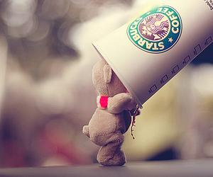 starbucks, bear, and coffee image