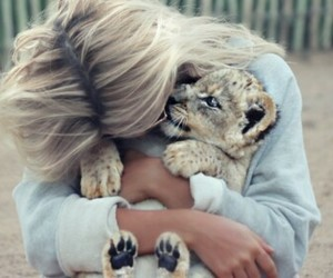 love and tiger image