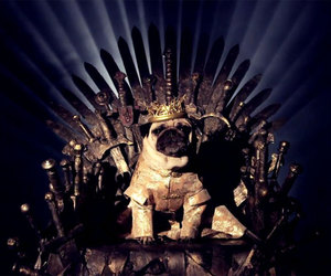game of thrones, funny, and king image