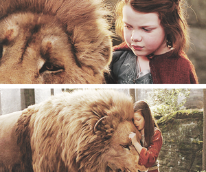 narnia, lion, and Lucy image