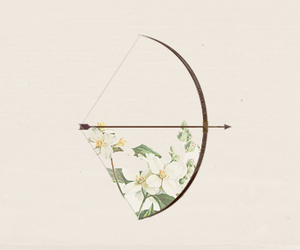 flowers, arrow, and bow image