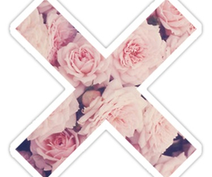 flowers, hipster, and rose image