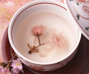 bowl, tea, and cup image