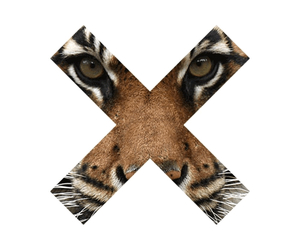 tiger, x, and overlay image
