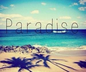 beach, paradise, and Dream image